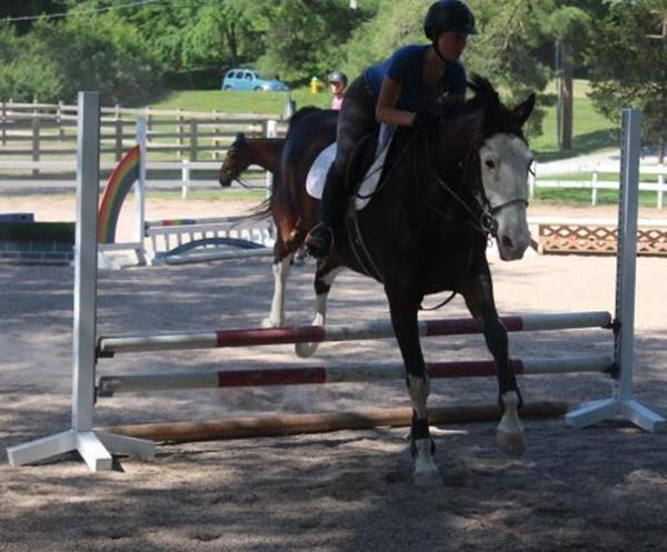 Equestrian makes it back in the saddle
