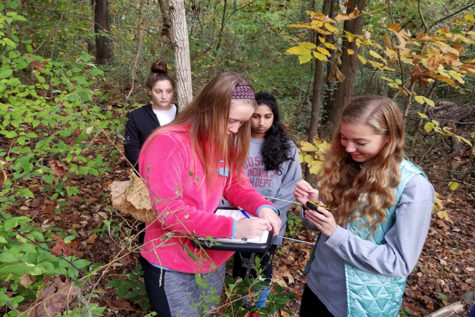 Parkway West SPARK! students senior Suma Gondi and junior Jane Fuller participate in turtle tracking in Forest Park for the Biosciences strand with students from Parkway South.