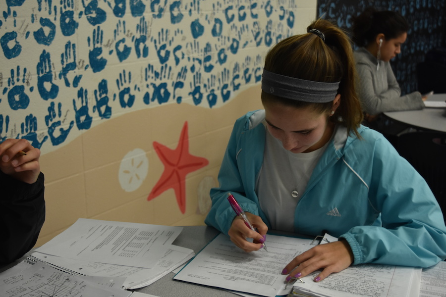Reviewing+her+history+notes+in+study+hall%2C+freshman+Charlotte+Zera+prepares+for+study+hall.