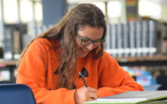 Quiz: How well are you going to do on your AP Exams?