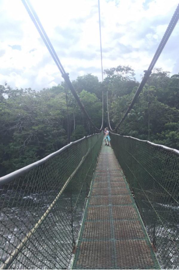 Students cross a suspension bridge.