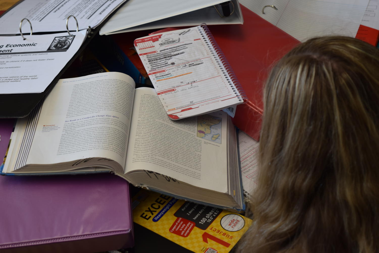 A student looks on at an array of school materials.