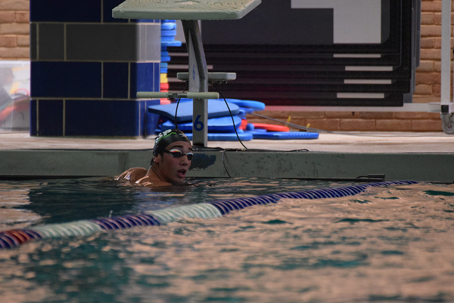 Freshman Kledi Kadiu trains in the pool for the Phillips 66 National Championship. Kadiu moved from Albania in pursuit of higher competition.