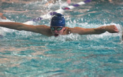 Boys' swim and dive team fights for success at state