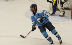 Redefining himself, senior Tarek Baig overcomes racism on the ice