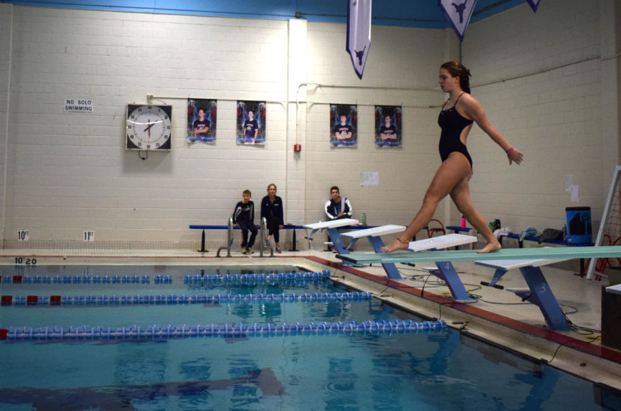 """Diving at a dual meet during girls swim and dive season, junior Claire Lynn shows off her ability by performing a front double. She has been on the girls swim and dive team for two years now. """"I am happy that we have a pool, but I really hope changes are made,"""" Lynn said.  """"I was nervous because I really wanted to do well and not get injured."""""""
