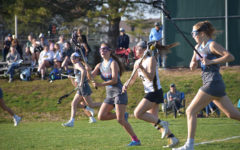 Girls lacrosse program continues to grow