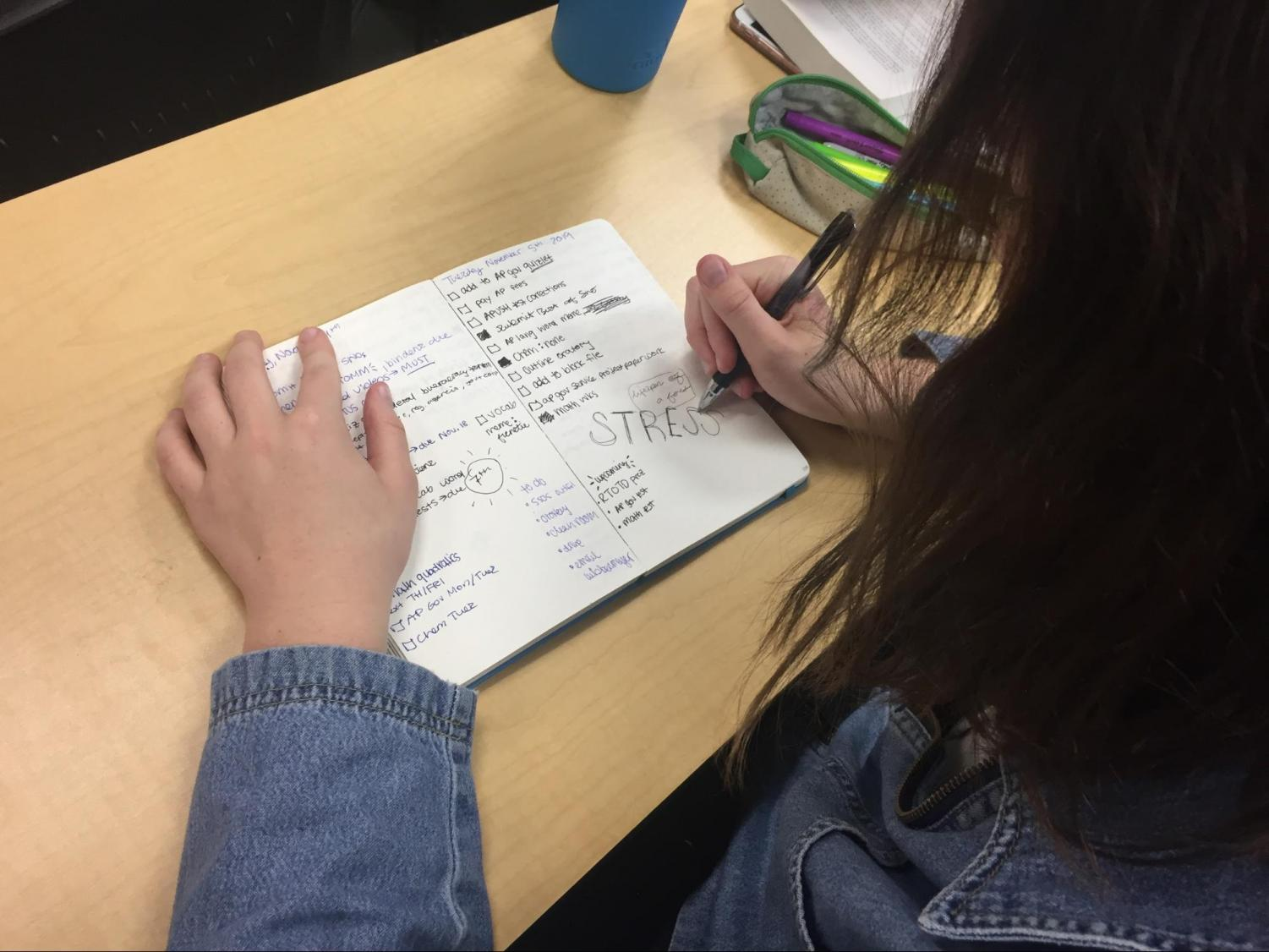A student reviews her planner and deals with impending stress.
