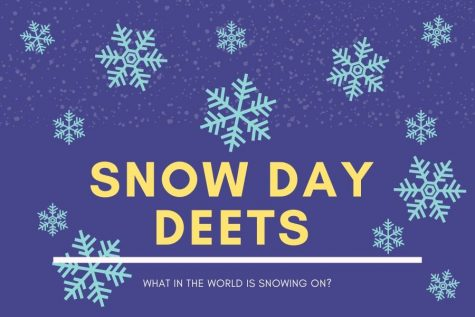 Are you thoroughly confused about snow days? Don't worry, you're not alone. We did the digging for you.