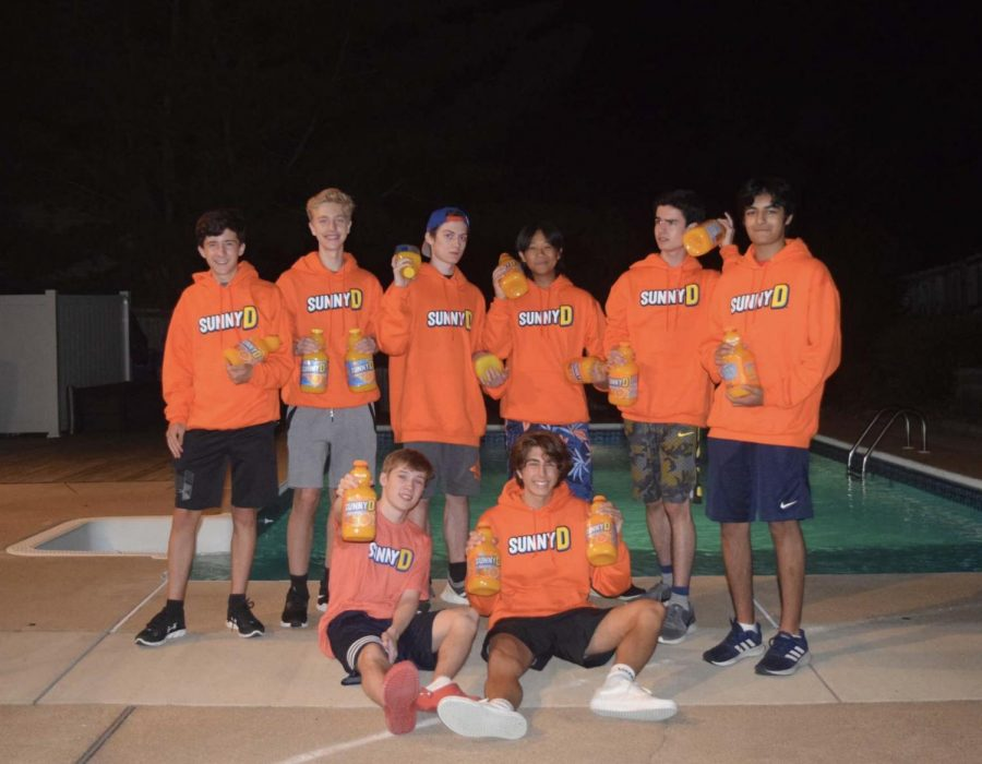 "Modeling their SunnyD hoodies and T-shirt, sophomores Ethan Deulca, Chris Roy, Basil Metroulas, Patrick Chen, Chris Woodcock, Shiv Sharma, Jake Rushing and Jack Maniaci advertise a beloved childhood beverage. ""[Sunny-D] is a very nostalgic drink for me. I remember going out to my fridge and getting a refreshing bottle of Sunny-D when I was little,"" Rushing said."