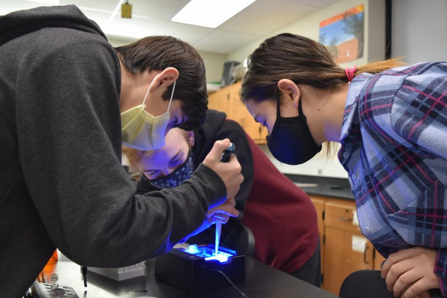 Learning+about+DNA+charges%2C+sophomores+Lucas+Escandon%2C+Cami+Levy+and+Ben+Scott+work+together+on+a+lab.+%0AThe+group%2C+in+their+biology+class%2C+had+to+adhere+to+COVID-19+restrictions.+%22Being+in+close+proximity+with+my+classmates+felt+a+little+weird+with+the+masks+and+seeing+people+after+nine+months+of+at-home+learning.+It+didn%27t+really+impact+the+lab+all+that+much%2C+it+was+just+%5Bus%5D+trying+not+to+touch+everything%2C+so+other+people+could+touch+the+tools%2C%22+Escandon+said.+