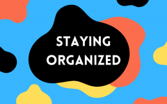 What follows is my method of organization, with the obvious disclaimer that you should use whatever system works best for you.